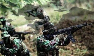 Terjadi Kontak Tembak TNI Dengan KSB Di Hitadipa 1 Orang Tewas