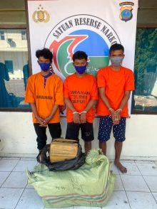Tiga Pemuda Bawa Ganja 30,5 Kg Bernasib Sial Hendak Dijual ke Medan Ditangkap di Taput