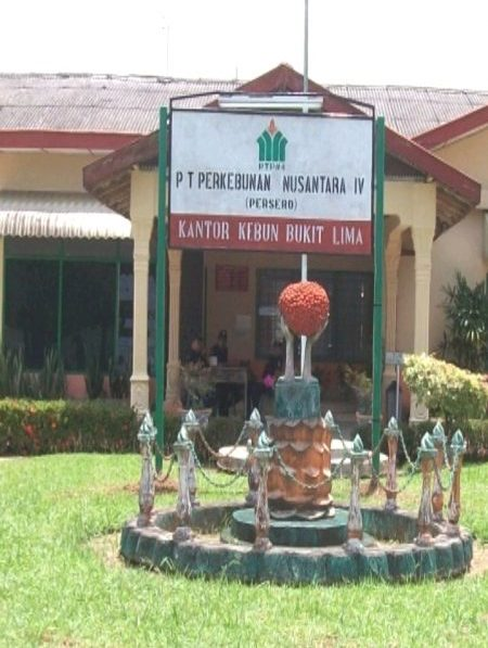PTPN4 Kebun Bukit Lima Lapokan Maling Sawit ke Polisi
